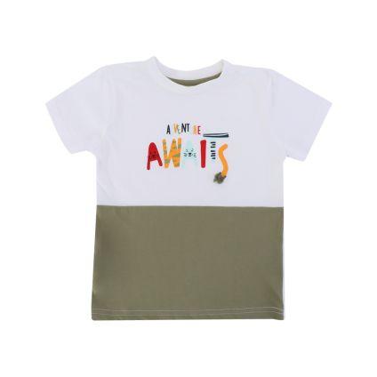 Camiseta PASOS
